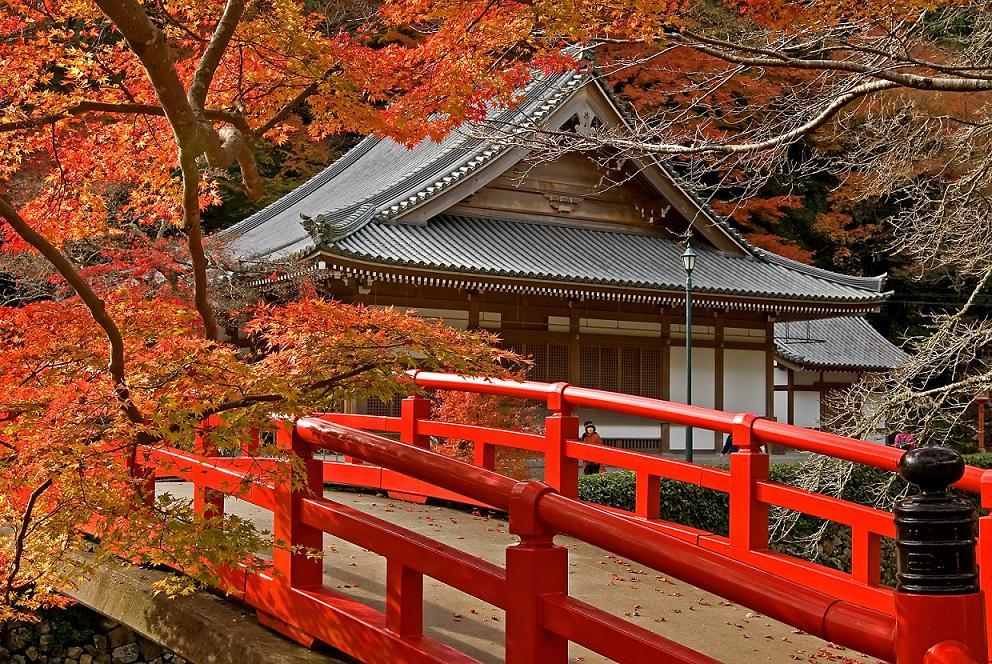 Купить электронные авиабилеты в Японию